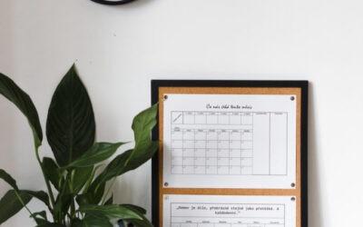 Rodinné plánování a organizace domácnosti